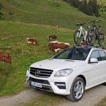 Fahrrad-Transport im oder auf dem Auto?