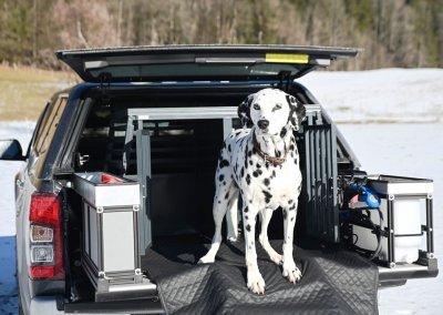 Mitsubishi L200 Hundetransporter