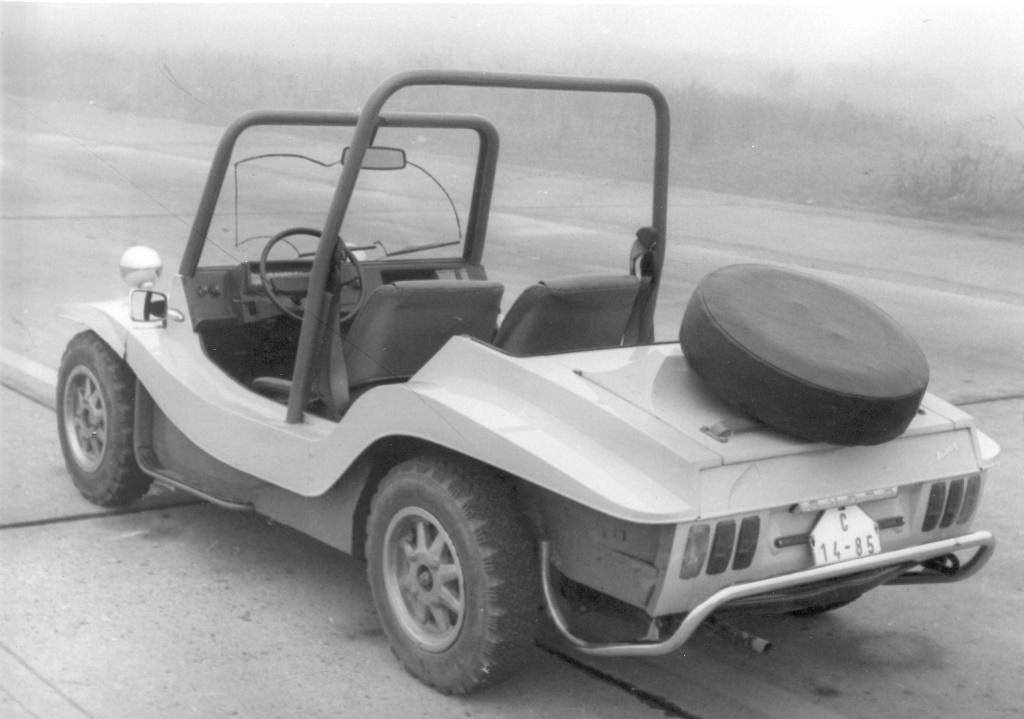 Skoda Buggy Typ 736