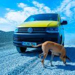 VW T6 Rockton – Der Film des Geländegängers