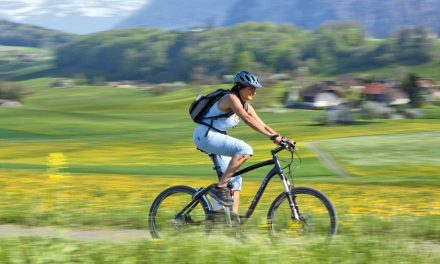 Welche Versicherung für welches E-Bike?