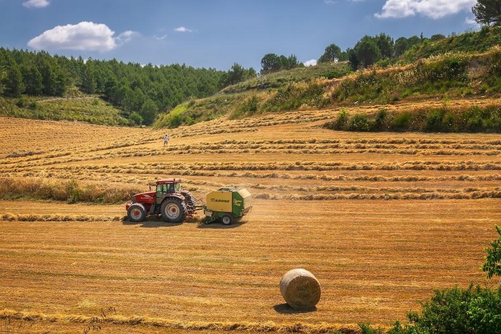 Erntezeit Traktor auf Feld