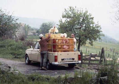 Renault 4 Pickup