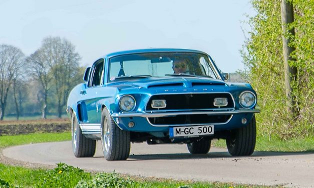 Shelby Cobra GT 500 – The Snake